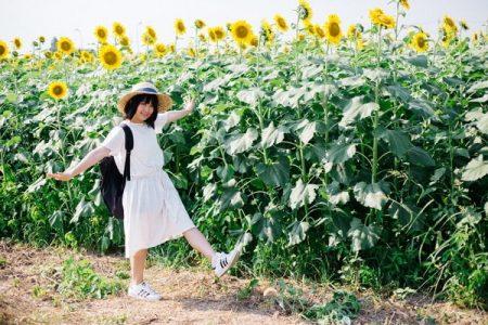 TSU_hasyagujyosi_TP_V-min