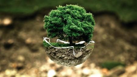 environmental-protection-683437_640